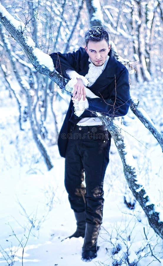 Prins in de de winter bos fabelachtige foto stock fotografie