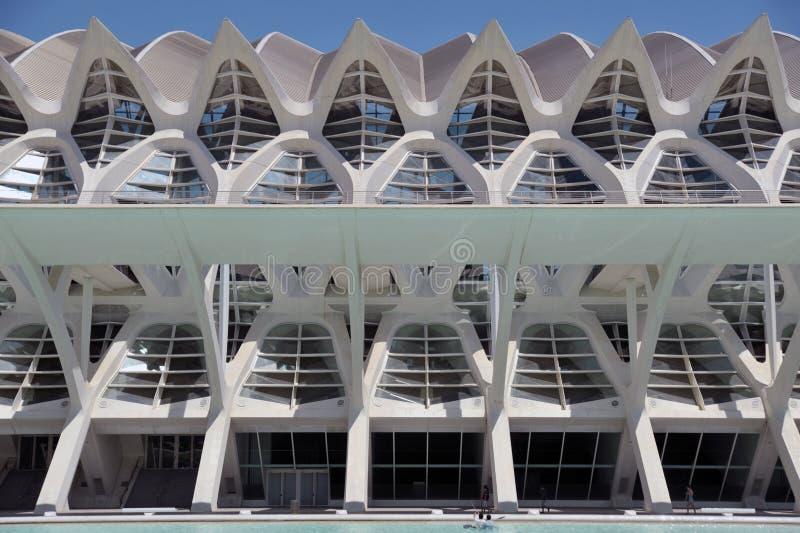 Prins Felipe Museum av vetenskap, stad av konster och vetenskaper, Valencia, Spanien, i en härlig sommardag, främre sikt royaltyfria foton