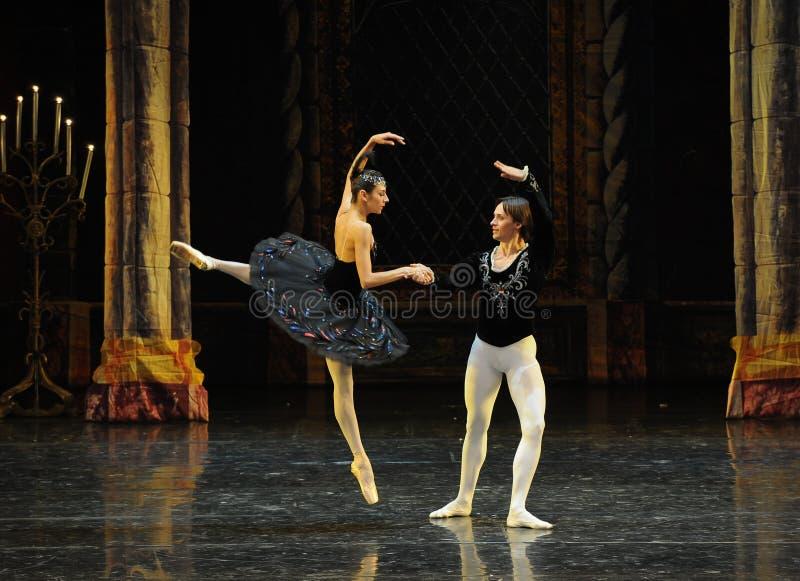 Prinsavverkningen som är förälskad med ceremoni-balett för svart svan-prins den vuxna svan sjön royaltyfria foton