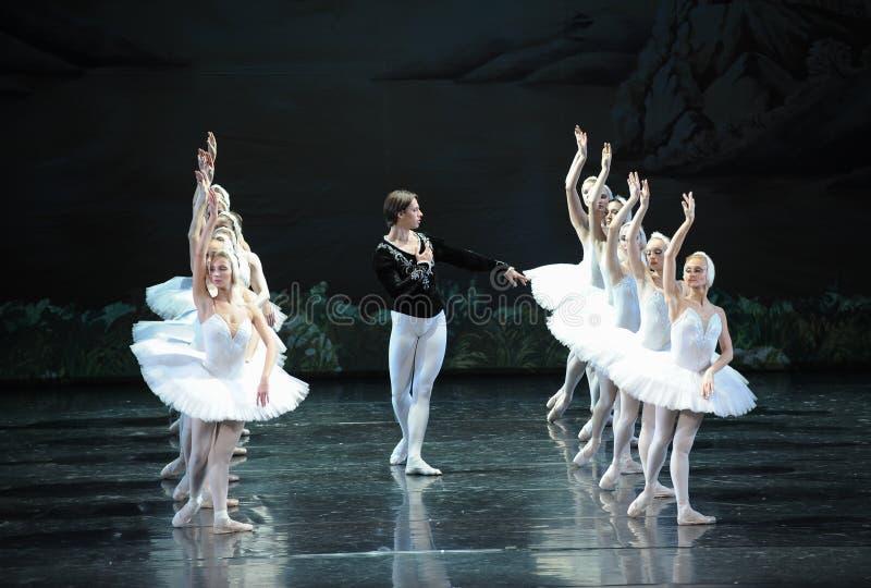Prinsen i sökande av den vita svanen av hans förälskelse-balett svan sjö arkivbild