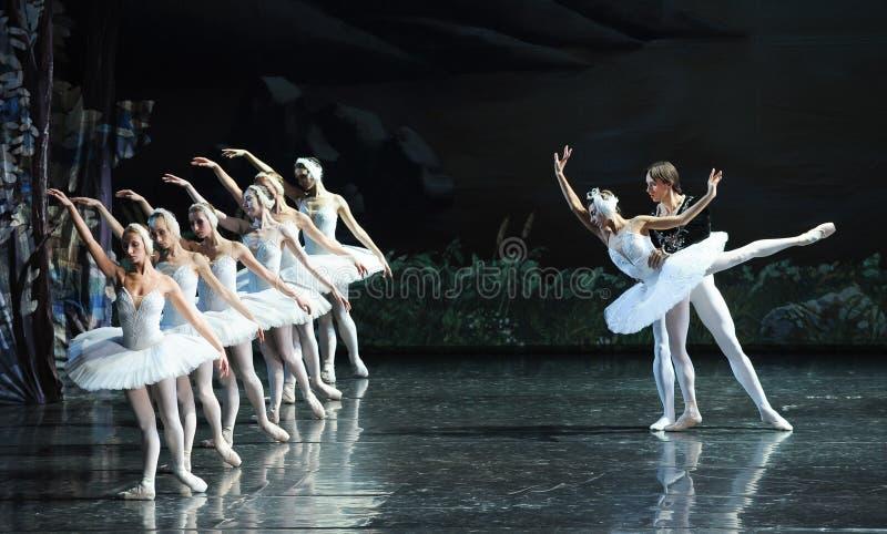 Prinsen och svanen älskar berättelse-balett svan sjön arkivfoton