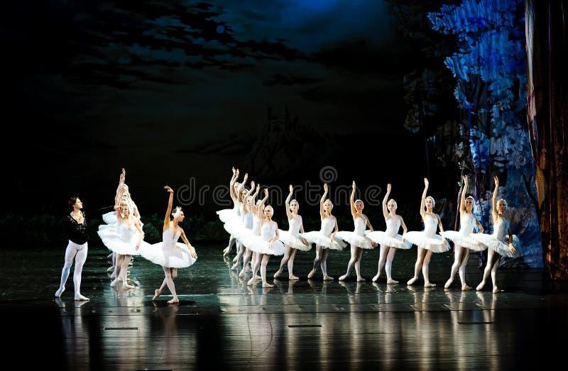 Prinsen söker svanarna kom till sjö-balett svan sjön royaltyfri fotografi