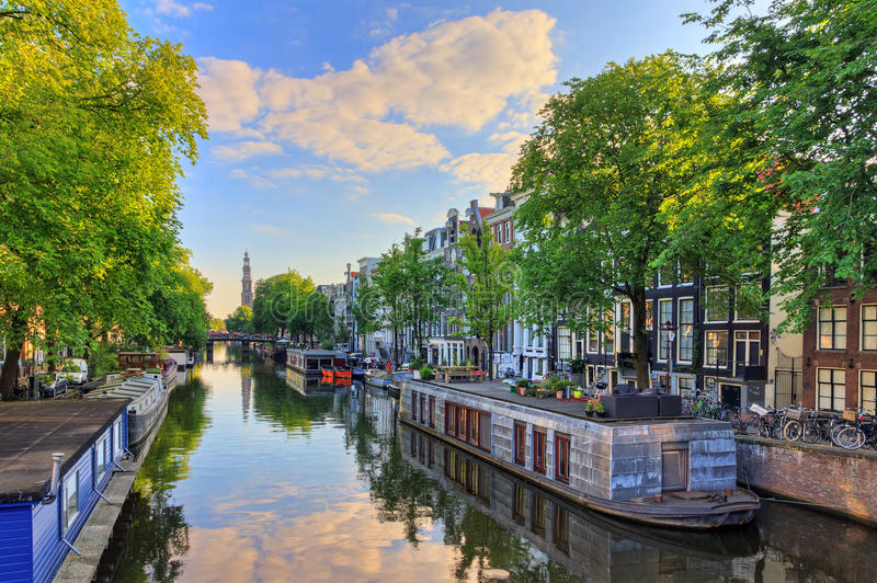Prinsengracht houseboat spring. Houseboats at the UNESCO world heritage Prinsengracht canal with the Westerkerk Western church on a summer morning with a blue royalty free stock images