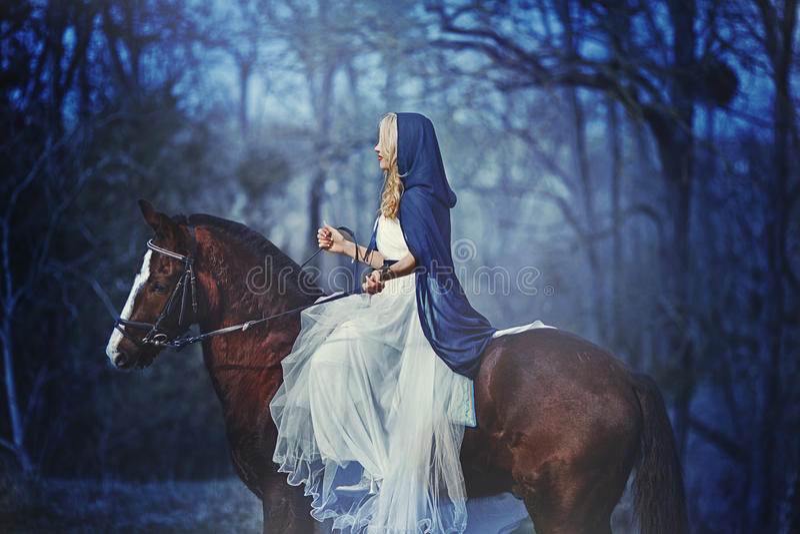 Prinsessa i skogen royaltyfria foton