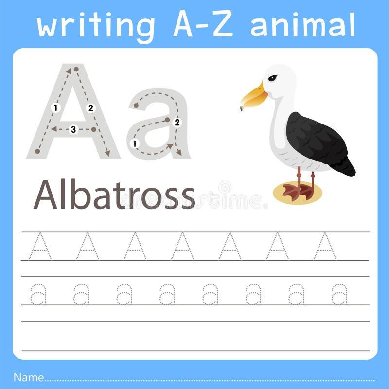Illustrator of writing a-z animal a albatross. For education stock illustration
