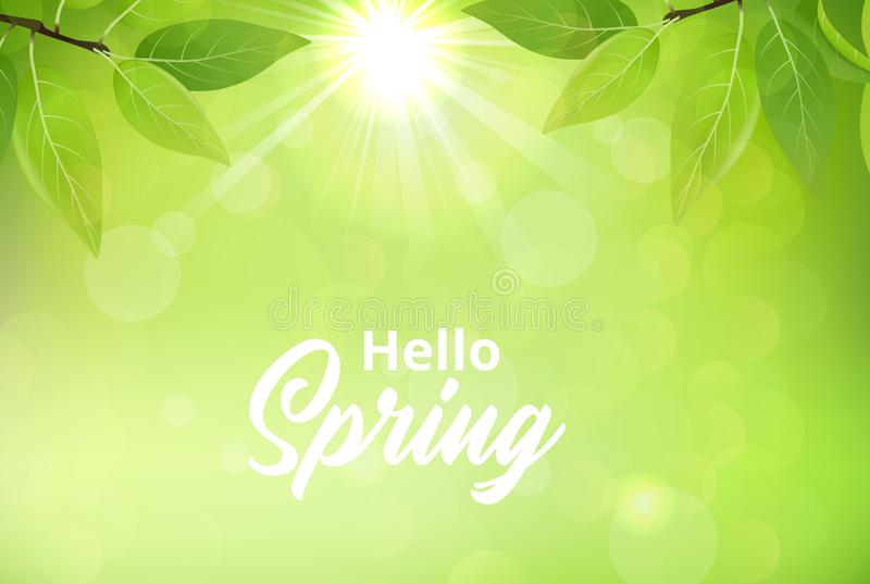 Spring background with green leaves vector illustration