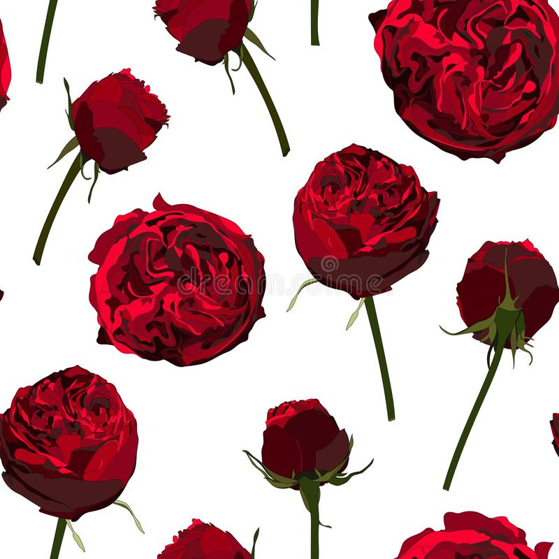 Seamless pattern with red roses peony. Perfect for background greeting cards and invitations. Seamless pattern with red roses peony. Perfect for background vector illustration