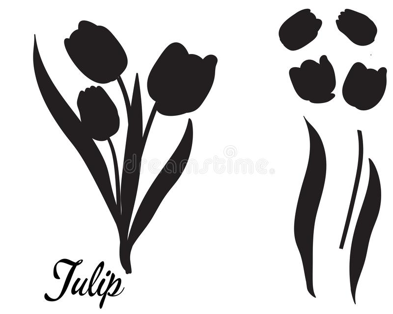 Silhouette of tulip flower. Bouquet of tulips. Leaves and head of a flower isolated, in one black color. Suitable for decor, cutting template royalty free illustration