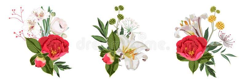 Floral illustration, Leaf and buds. Set of botanic composition for wedding, greeting card. royalty free illustration