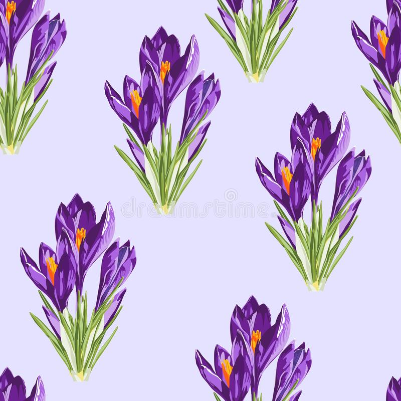 Violet crocus flowers bouquet seamless pattern. Watercolor style Illustration. Light background. Trendy spring flower wallpaper or fabric stock illustration