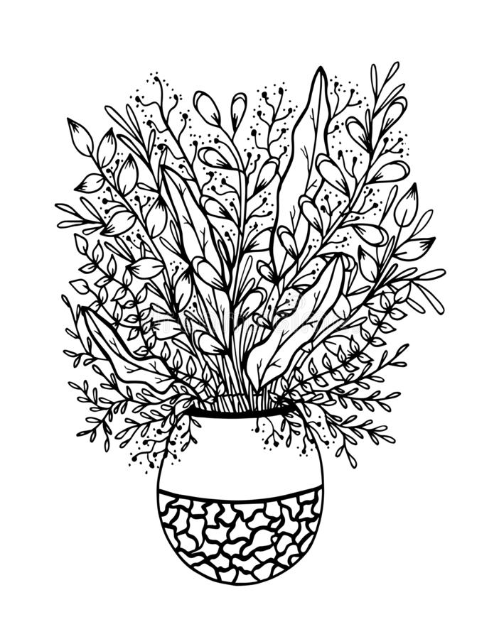 Hand drawn floral doodle with vase. Coloring pages for book. Vector line art vector illustration