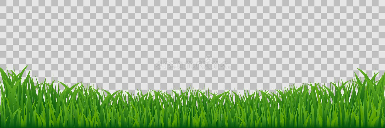Green Meadow Grass Border Isolated On Transparent Background. stock photography