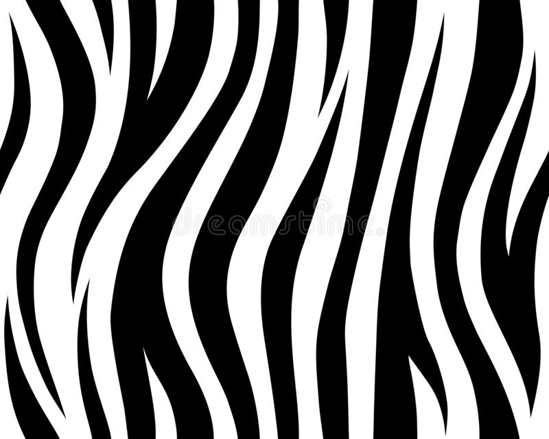 Animal safari abstract skin white and black seamless pattern repeated. Vector jungle strip. white tiger royalty free illustration