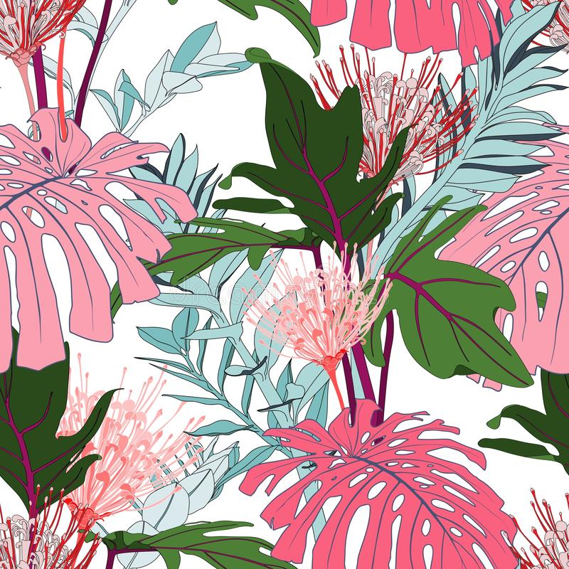 Pink line protea flowers with exotic pink monstera and green tropical leaves, white background. Floral seamless pattern. Tropical illustration. Summer beach stock illustration