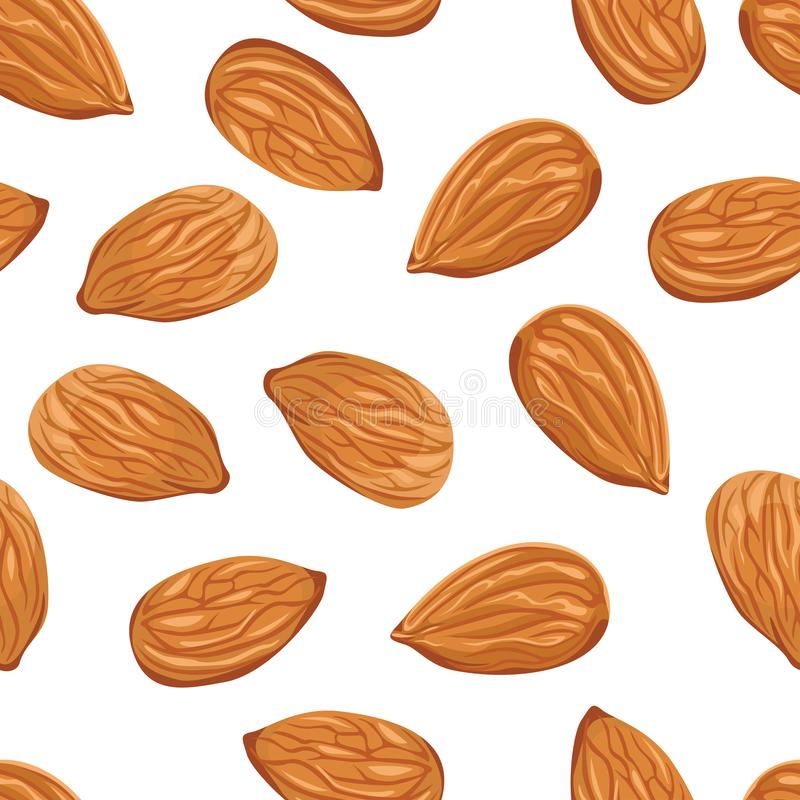 Almond nuts seamless pattern on a white background. stock illustration
