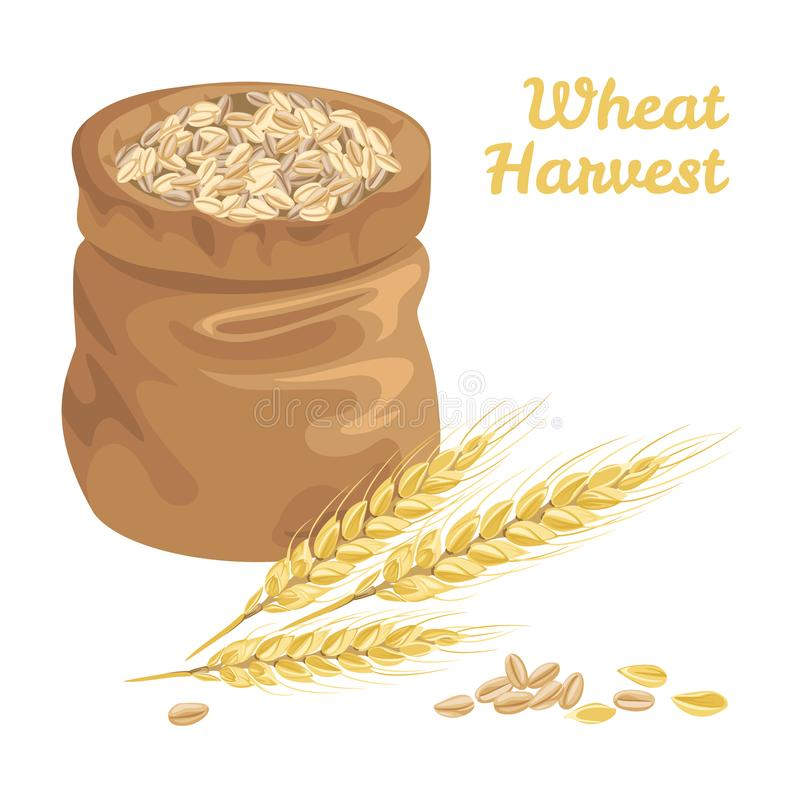 Sack with grains wheat and ears of wheat royalty free illustration