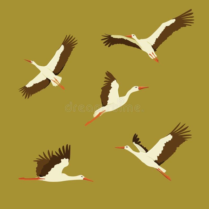 Stork Fly Set Vector Illustration vector illustration