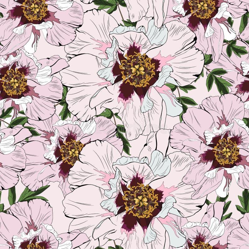 Hand drawn illustration of pink peony flowers seamless pattern. stock illustration