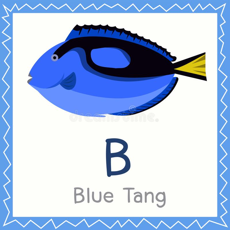 Illustrator of B for Blue Tang animal. Education for kid royalty free illustration