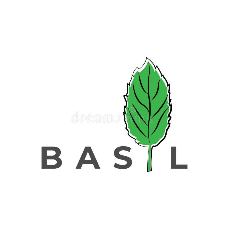 Basil vector logo. Basil illustration. Design vector illustration