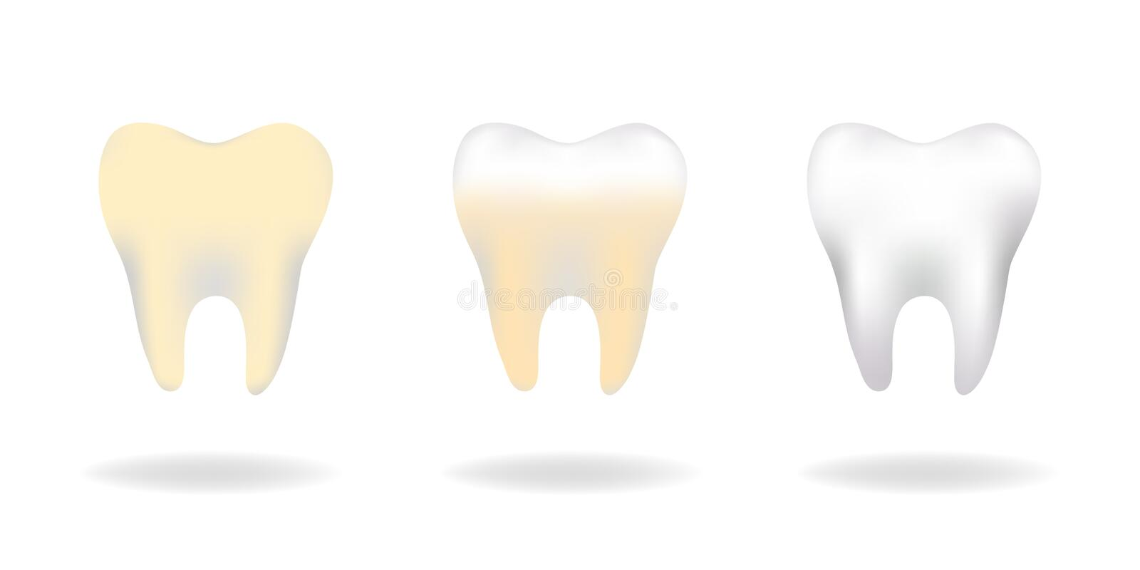 Vector set of three molar teeth care, clean teeth, keep healthy and strong, prevent tooth decay, concepts for oral education and m stock illustration