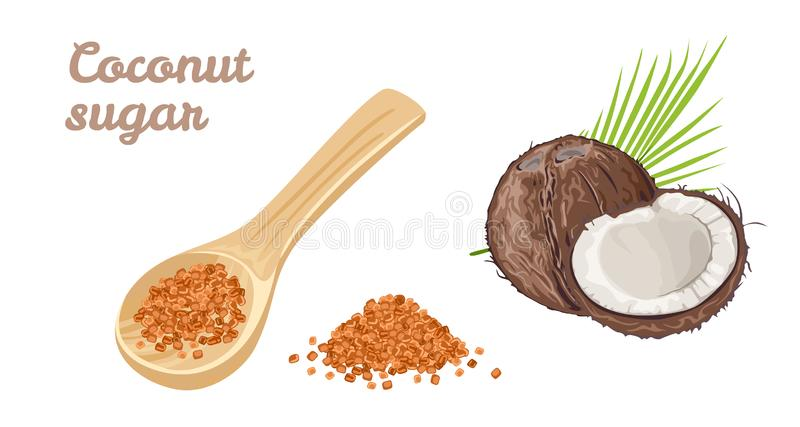 Coconut sugar set. Sweetener in a wooden spoon, whole and half coconut, pile of brown sugar vector illustration