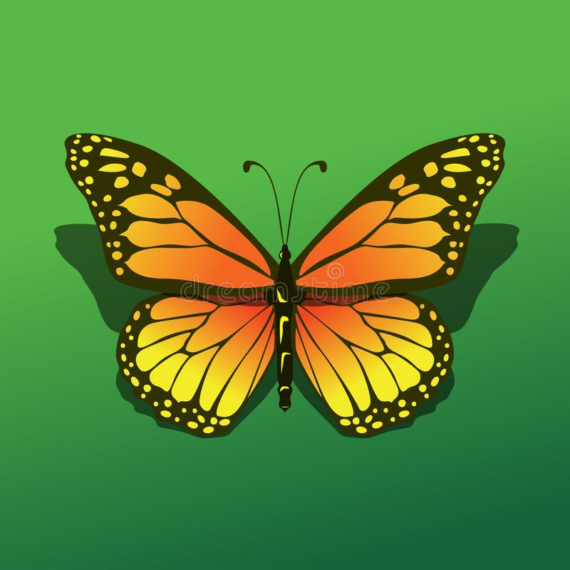 Isolated butterfly alight at green background with shadow beautifull realistic simple icon illustration stock illustration