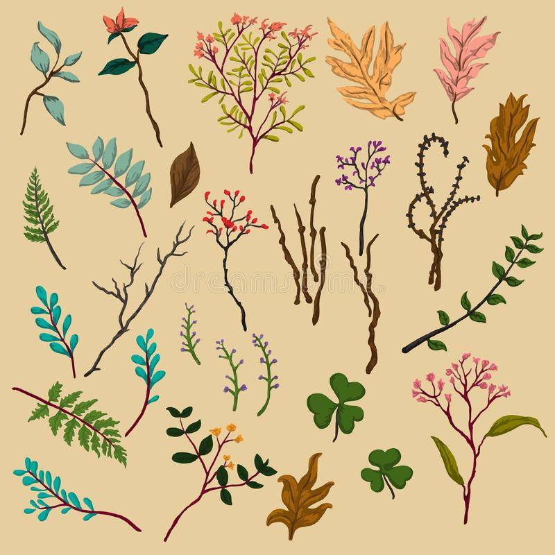 Floral Autumn Pattern Vector Design royalty free stock photography