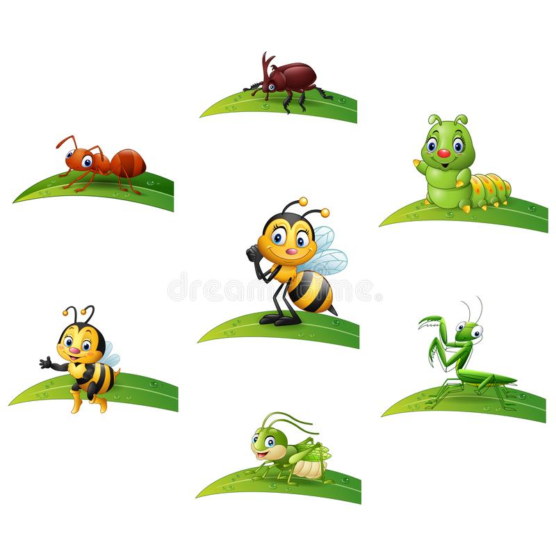 Cartoon insect on leaf collections set royalty free illustration