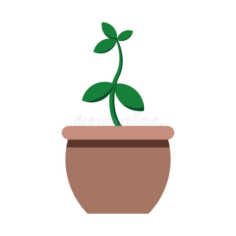 Tree plant pot leaf or leaves stock illustration