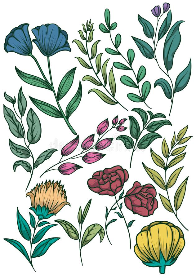 Floral pattern with leaves Premium Vector. Floral pattern with leaves soft colour element design with  Premium Vector vector illustration