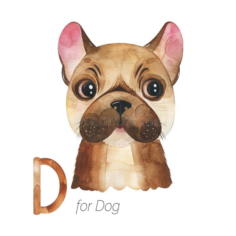 Cute Dog for D letter. Watercolor Animals Alphabet.Learn letters with funny animals. Cute Dog for D letter. Perfect for education, baby shower, children prints stock illustration