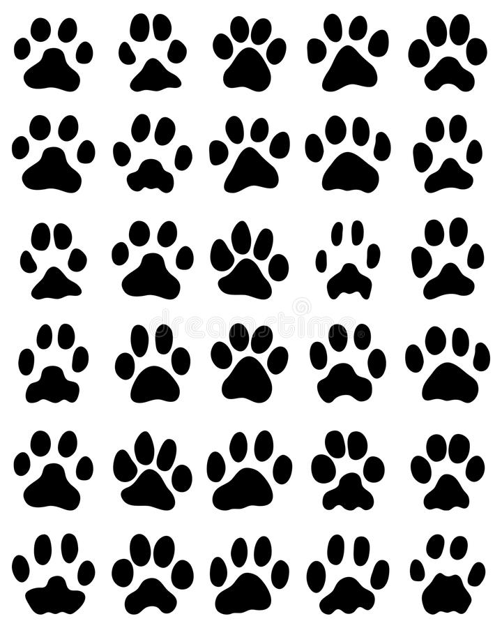 Print of cats paws royalty free illustration