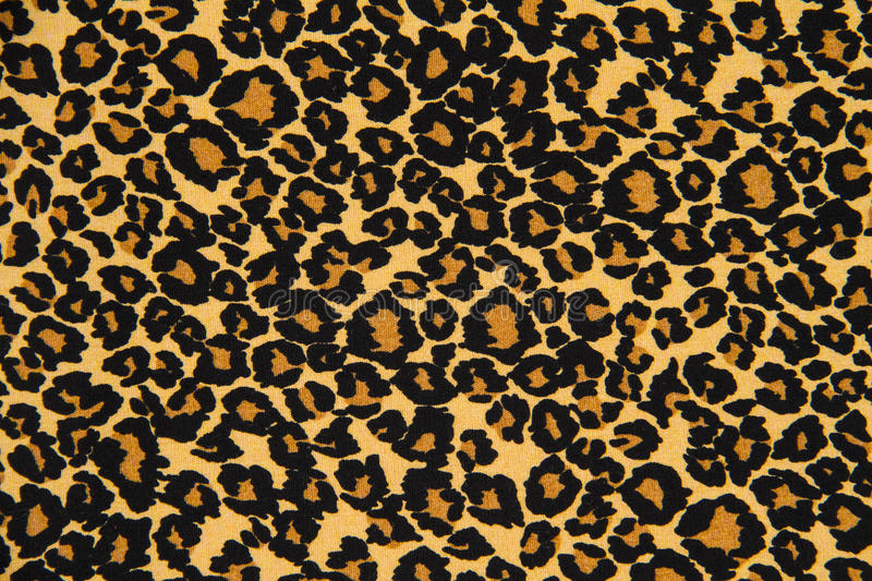 print fabric striped leopard for background royalty free stock images