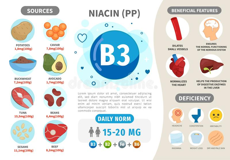 Infographics Vitamin B3. Products containing vitamin. Daily norm. Symptoms of deficiency. Vector medical poster royalty free illustration