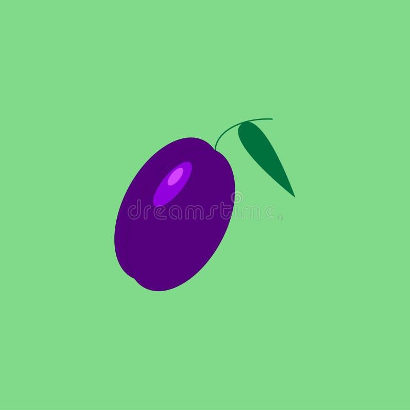 Plum on the light green background. Violet plum on the light green background royalty free illustration
