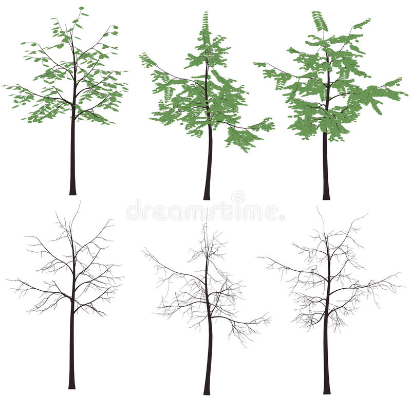Download Print  Tree Leaves Trunk  Silhouette Royalty Free Stock Photography - Image: 23595307