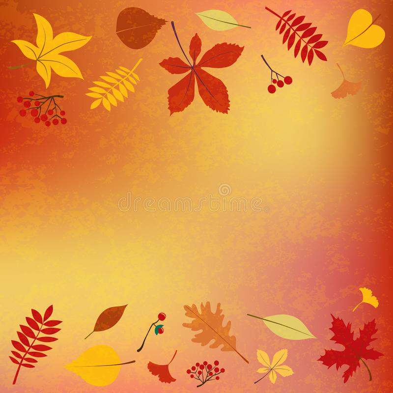 Autumn leaves, seasonal berries template for text. royalty free illustration