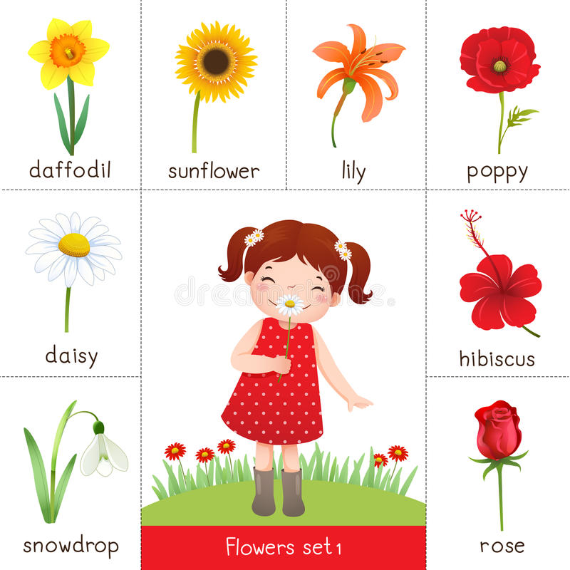 Printable flash card for flowers and little girl smelling flower royalty free illustration