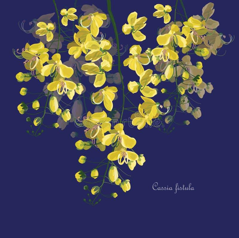 PrintCassia-Fistel-Blumensymbol von Thailand vektor abbildung