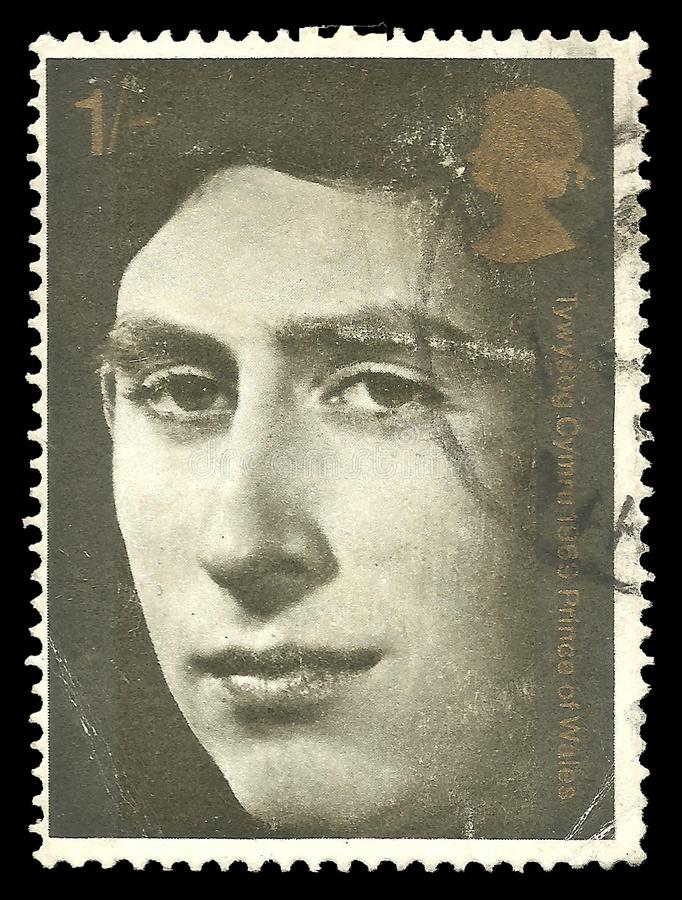 Prinz von Wales lizenzfreie stockfotografie