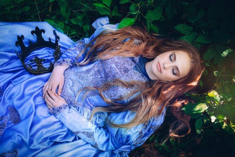 Prinzessin im magischen Wald stockbilder