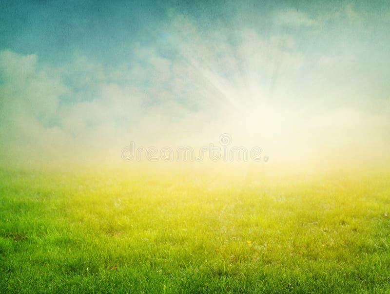 Priorità bassa astratta della natura di estate fotografie stock