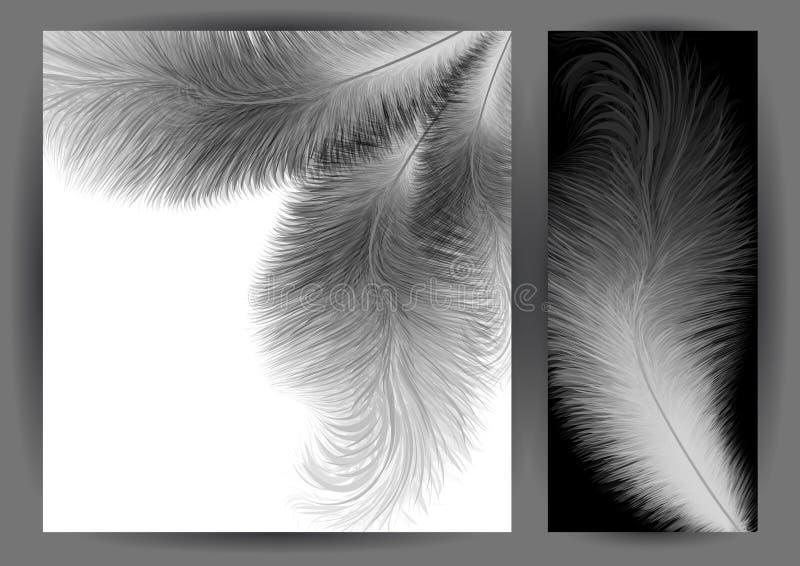 Priorità bassa astratta della piuma illustrazione vettoriale
