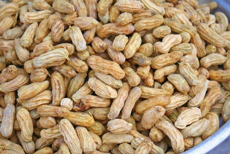Priorità bassa bollita delle arachidi immagine stock