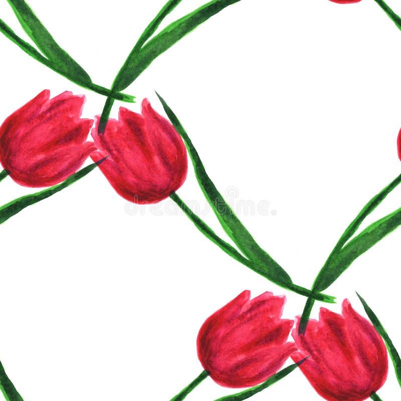 Priorità bassa decorativa con i fiori della sorgente Elementi dipinti a mano dell'acquerello Reticolo senza giunte illustrazione di stock