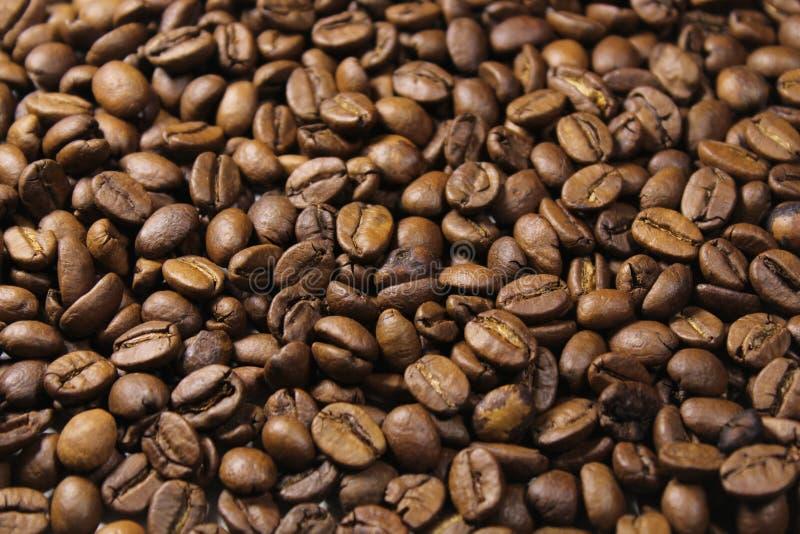 Priorità bassa dei chicchi di caffè Fine in su fotografie stock