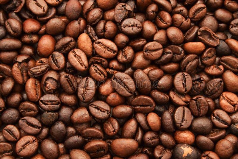 Priorità bassa del caffè fotografie stock
