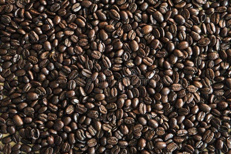Priorità bassa del chicco di caffè fotografia stock