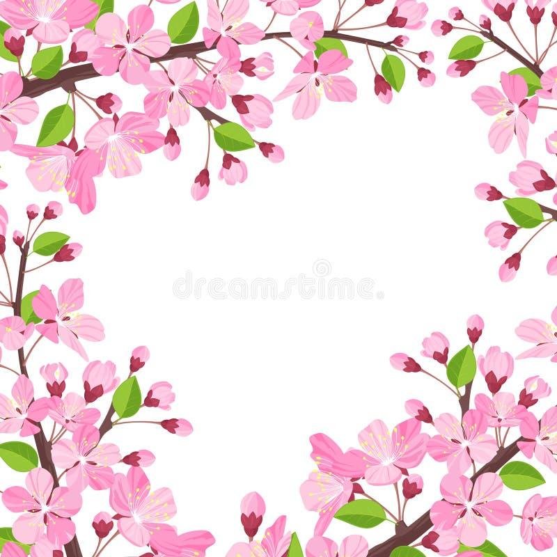 Priorità bassa del fiore di ciliegia illustrazione vettoriale